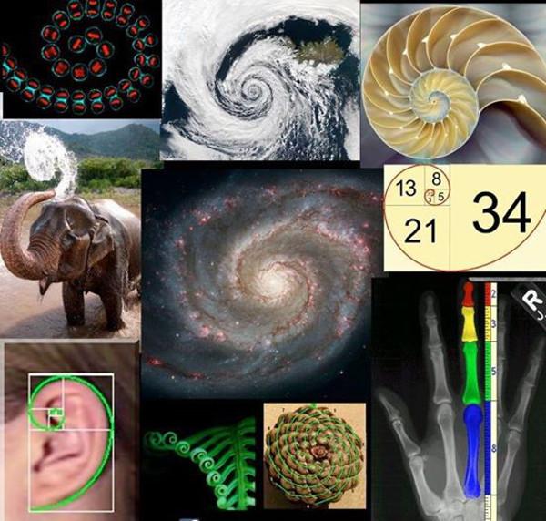 fibonacci-demo